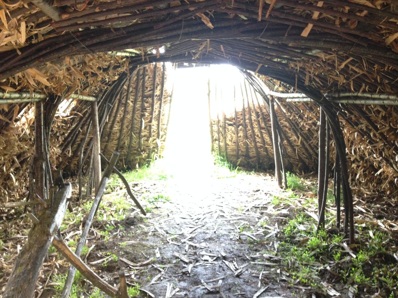 Cabane de feuillardier