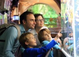 Le réseau Haute-Vienne, Escapades en famille