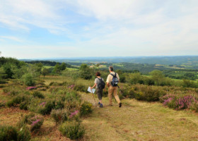 Offre d'emploi Chargé(e) de mission « bivouac et tourisme durable » au PNR Millevaches